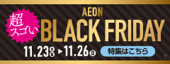 BLACK FRIDAY(PC)